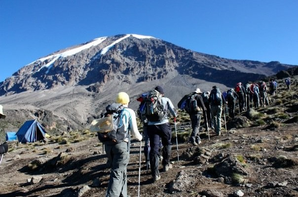 The Peak of Africa and Below | Climb Mount Kilimanjaro